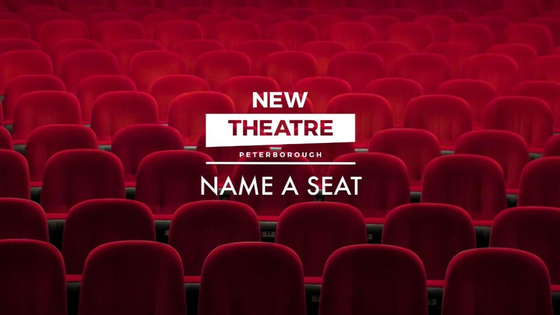 Live Forever at New Theatre